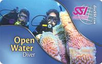 SSI open water diver program at eco diver